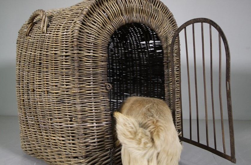 basket kennel