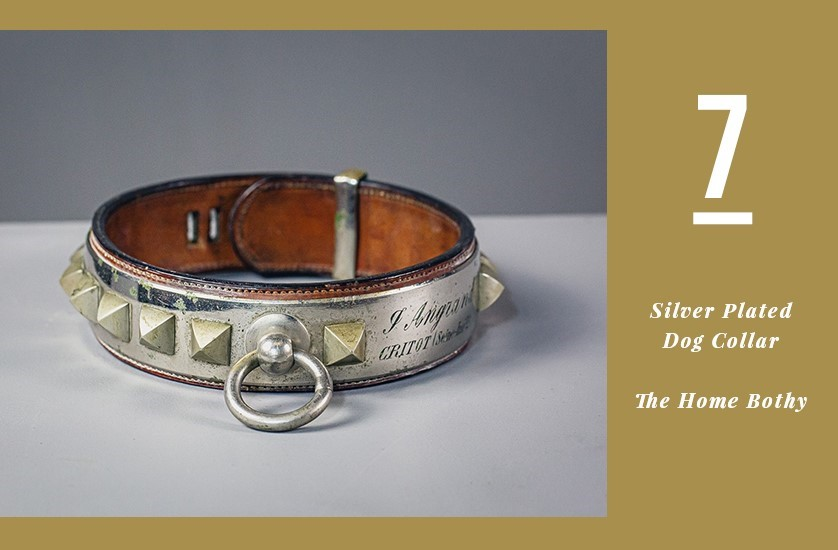 Silver Plated Dog Collar