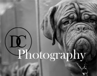 DC Photography prints